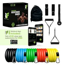 Izza Fitness 11 PCS Resistance Bands Set Home Gym Exercise Tube Bands Training