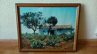 Cuadro fotografia Paisaje rural ya enmarcado. Decoracion rustica y campestre.