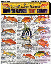 """SALTWATER FISH How to Catch """"EM"""" Chart - Tightline Tightlines Publications #6"""