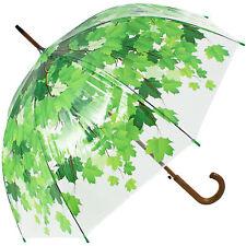 Umbrella Tree Clear Dome