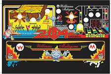 Multi Williams arcade cpo