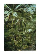 London - Kew, Royal Botanic Gardens, Temperate House - Vintage Postcard