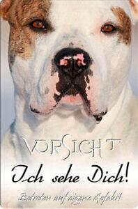 American BULLDOG - A4 Metall Warnschild Türschild SCHILD Hundeschild - AMB 13 T5