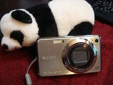 Sony Cyber-Shot DSC-W290 12.1MP Digital Camera - Silver