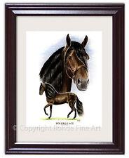 BOLERO LaCE - FAMOUS PASO FINO stallion FRAMED HORSE ART signed Rohde NICE!