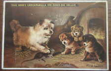 HOOD'S SARSAPARILLA VICTORIAN TRADE CARD ANTIQUE CAIRN TERRIER DOG AND PUPPIES