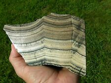 FINEST,EXTREMELY RARE SKARN DISPLAY(DATOLITE,WOLLASTONITE,HEDENBERGITE),RUSSIA