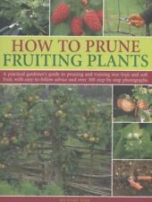 How to Prune Fruiting Plants: A Practical Gardener's Guide to Pruning and Traini