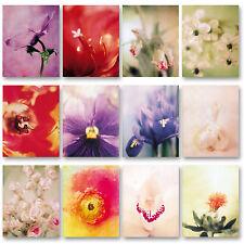 Poster Blumenbilder Blumenfotos insgesamt 12 Stück - 29x37cm