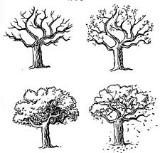 Unmounted Rubber Stamps, Scenic Stamps, Four Seasons Tree Set, Trees, Leaves