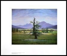 Caspar David Friedrich el solitario árbol póster son impresiones artísticas con marco de aluminio 60x80cm
