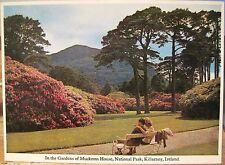 Irish Postcard In GARDENS MUCKROSS HOUSE Demesne Killarney Ireland Mac Series