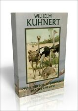 Friedrich Wilhelm Kuhnert - over 250 public domain wildlife & bird pics on DVD