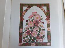 Four beautiful botanical Ltd edition botanical prints 30cm x 21cm