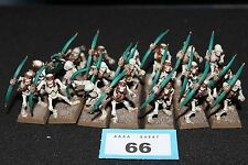 Juegos taller Warhammer Tomb Kings esqueleto guerreros arqueros Regimiento Pintado
