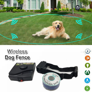 Electric Fence Shock Collar Pet Dog Guardian Sitter Pet Behavior Training