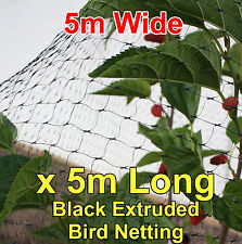 5mtr wide x5mtr  BLACK Anti Bird Netting, Fruit / Plant Tree Bird Netting / Net