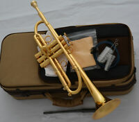 Brushed gold plated Professional Bb Trumpet Horn Monel piston With Case
