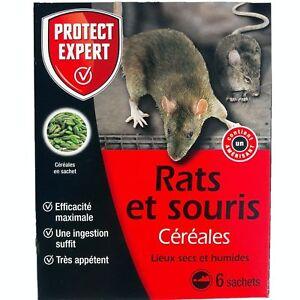 6 SACHETS CÉRÉALES RATS SOURIS 150G  lieu sec humide PROTECT EXPERT