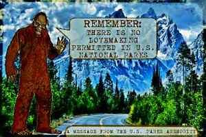 *VINTAGE BIG FOOT SASQUATCH SIGN* MOUNTAINS FOREST PARK SERVICE U.S. NATIONAL