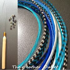 Feathers Hair Extensions Kit Lot 10 Grizzly long Aqua Turquoise BLUES KIT