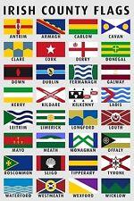 FLAG FRIDGE MAGNET - IRISH 32 COUNTIES IRELAND