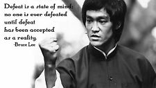 "Bruce Lee Quotes Mini Poster 13""x19"""