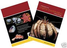 Field Guide to the Marine Invertebrates of South Australia -Karen Gowlett-Holmes
