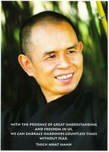 Thich Nhat Hanh Great Understanding and Freedom Buddhism Quote Postcard