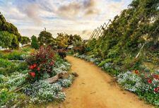 5x3FT Wild Green Nature Landscape Vinyl Photography Background Photo Props