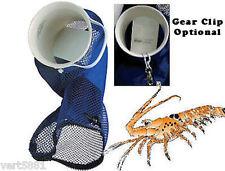 LOBSTER Inn Hotel Motel Catch Bag bug bag bully lobster snair snare dive season