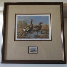 1987 Texas Duck Stamp Print & Stamp Framed Gary Moss Signed