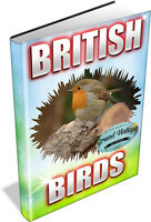 BRITISH BIRDS - 74 VINTAGE BOOKS ON DVD - birdwatching,twitching,ornithology