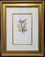 Hand Painted Flower Etching Art Print Custom Framed 29x23 Botanical Floral