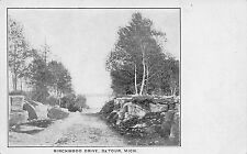 MI - 1900's RARE! Birchwood Drive at De Tour Village, Michigan - Chippewa County