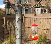 Summer Hummingbird Feeders 1 Garden Collection Durable Plastic easy to Clean Red