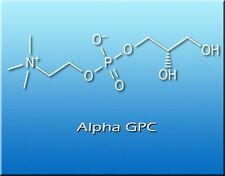 Alpha GPC 99% Choline 100g Bulk Powder by Bionootropics