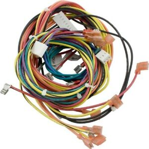 Raypak 009490F Wire Harness for Electronic IID Heater