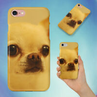 ADORABLE ANIMAL BREED CHIHUAHUA HARD BACK CASE FOR APPLE IPHONE PHONE