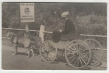 1938 QUEBEC CANADA Milk DOGS Dog Cart CARRIAGE Dairy RPPC Real Photo Postcard QC