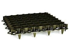 Rasengitter, Paddockplatte Wabenplatte grünlich 492x492mm x 39mm