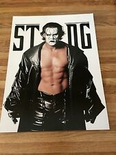 WWE STING THE ICON / WRESTLEMANIA X-SEVEN ROCK STONE COLD 2 Sided Poster 12x16
