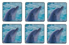 DOLPHIN COASTERS 1/4 BAR & BEER SET OF 6