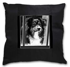 Border Collie in Window Black Border Satin Feel Cushion Cover With , AD-CO70-CSB