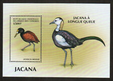 Comoro Stamp - Birds Stamp - NH