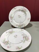 "2 Vintage Theodore Haviland Apple Blossom 7.5"" Salad Dessert Plates - Free Ship"