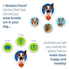 Wisdom Panel Canine DNA Test Kit 3.0 Detect Dog Breeds Ancestery  250 breeds