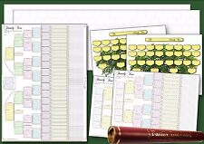 Pack of 7 Family Tree Charts in a Deluxe tube
