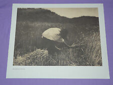 "Edward Curtis Native American Indian Vintage Photo Print ""THE APACHE REAPER"""