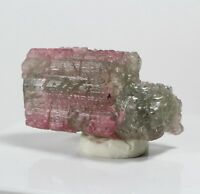 255.95ct Bicolor Tourmaline Crystal Gem Mineral Brazil Green Pink Etched